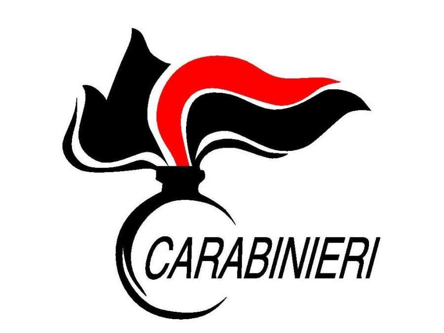 Risultato immagini per logo carabinieri